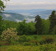 Ozark Mountain Views by David  Hughes