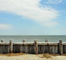 Morris Island by Bjana Hoey