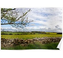 Cotswolds Pastures and Stone Wall Poster