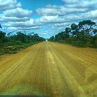 Gnowellen road by BigAndRed