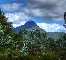 mountains through the trees by BigAndRed