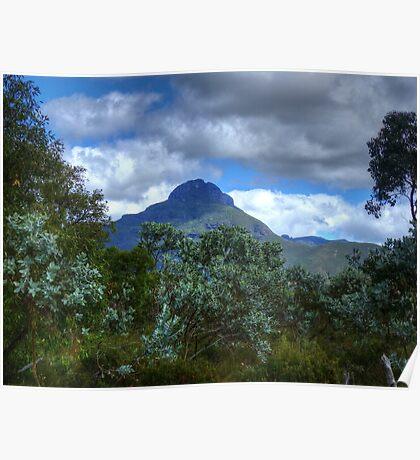 mountains through the trees Poster