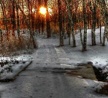 Evening Light on the Snow Covered Foot Bridge by bannercgtl10