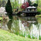 Brookside Gardens by Robin Black