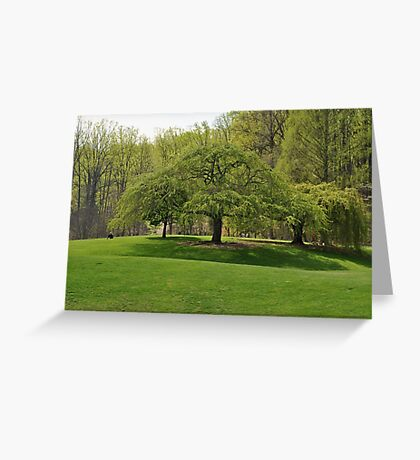 Weeping Willow at the Gardens Greeting Card