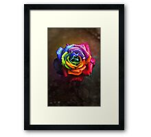 Rainbow Dream Rose Framed Print
