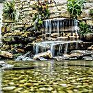 Garden Waterfall by Robin Black