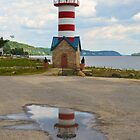 Lighthouse in a Puddle by Betty Maxey