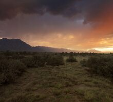 Monsoon Mountain 3 by Bob Larson