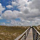 Salvo Dunes by Robin Black