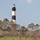 Bodie Island Lighthouse by Robin Lee