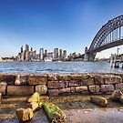 Sydney harbour views by Shannon Rogers