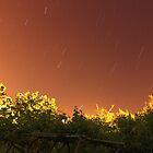 Little Trails In The Sky by Omar Dakhane