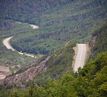 Cabot Trail by Natalie Ord