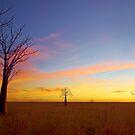 The Kimberley Plains Sunset by Adam Gormley