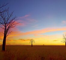 The Kimberley Plains Sunset by Adam Gormley