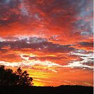 Colourful sunset by Heather Scott
