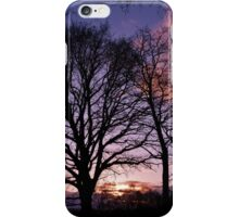 Woodland Edge Sunset iPhone Case/Skin
