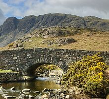 The Bridge By Wastwater by Jamie  Green