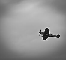 Spitfire ZDB by Nigel Jones