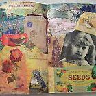 Truffles ~ Seeds by Kanchan Mahon