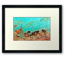 The Emu Races Framed Print