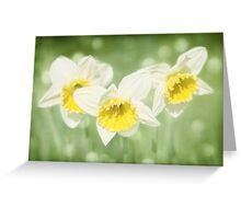 Enchanted Spring Daffodils Greeting Card