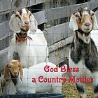 God Bless a Country Mother  by © Betty E Duncan ~ Blue Mountain Blessings Photography