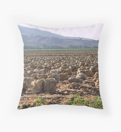 """Onions"" Throw Pillow"