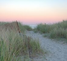 Dunes by Alexa Clement