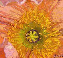 """Poppy"" by Gail Jones"