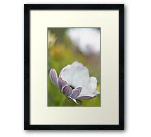 Pure Petals Framed Print