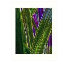 More Monkey Grass Art Print
