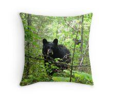 The Great Bear Thief Throw Pillow