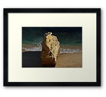 rock in paradise Framed Print