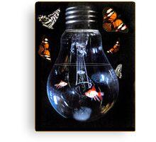 Illuminating nature Canvas Print