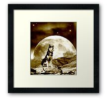 You can't be Sirius ... Framed Print
