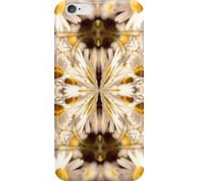 Divine Daisies iPhone Case/Skin