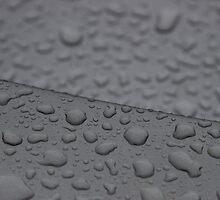 Showers by LamartDesigns