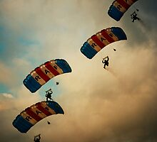 RAF Falcons by ajgosling