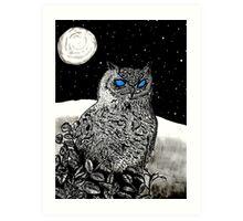 Spice Owl  Art Print