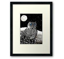 Spice Owl  Framed Print
