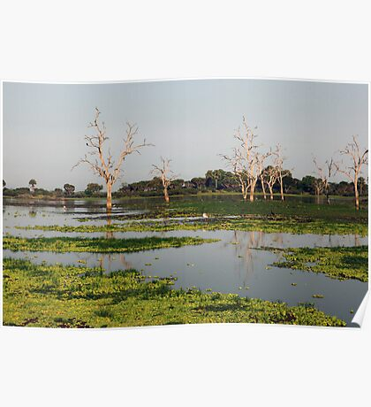 Reflections in Lake Manze Poster