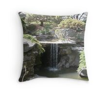 Thirst for Living Water Throw Pillow