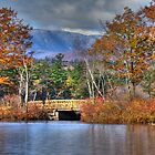 Quiet Country Bridge by Carrie Blackwood