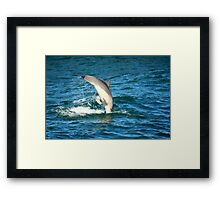 Re-entry Framed Print