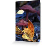 Mushroom Kingdom (4322) Greeting Card
