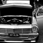 my holden by stephen walters