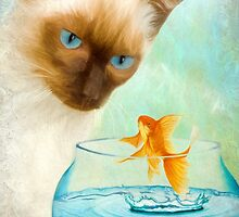 Cat & Fish by Ana CB Studio