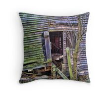 Abandonded Mill Throw Pillow